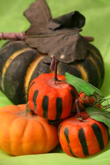 Free Halloween Pumkins Up Close Royalty Free Stock Photos - 5571028