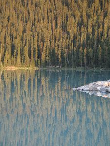 Calm Lake And Forest Royalty Free Stock Photos