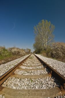 Free Railroad Track Royalty Free Stock Photo - 5571455