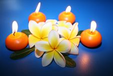 Free Candles Royalty Free Stock Photos - 5572078