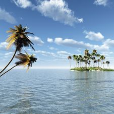 Free Palm Island Stock Photography - 5572182