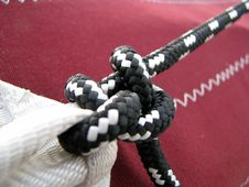 Free Knotted Knot Stock Photos - 5572613
