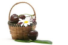 Free Cherry In A Basket Royalty Free Stock Photography - 5572697
