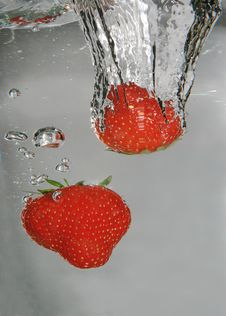 Free Strawberry Dive Stock Images - 5573234