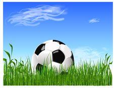 Free Football Royalty Free Stock Photo - 5573645