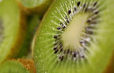 Free Kiwi Royalty Free Stock Photos - 5574868