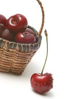 Free Cherry Stock Images - 5575344