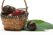 Free Cherry Stock Photo - 5575440