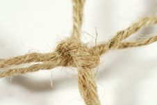 Free Close-up Of A Knot Stock Images - 5575504