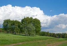 Free Landscape Royalty Free Stock Image - 5575706