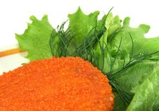 Free Cutlet Royalty Free Stock Image - 5576036