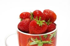 Free Strawberry In The Cup Stock Photos - 5576133