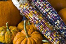 Autumn Still Life Stock Images