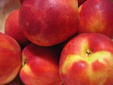 Free Peaches Stock Photography - 5577262