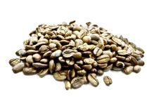 Free Coffee Stock Image - 5577411