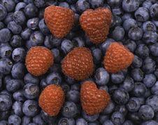 Raspberries On Blueberries Royalty Free Stock Images