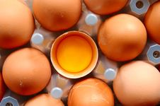 Free A Set Of Eggs Stock Photography - 5579312