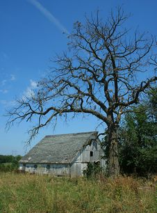 Free Spooky Old Barn Royalty Free Stock Photos - 5579528