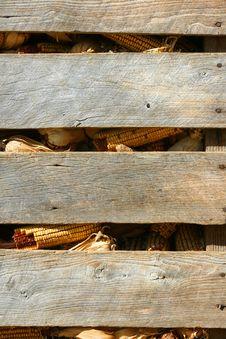 Free Corn Crib Background Stock Images - 5579574