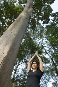 Woman Performing Yoga Next To A Tree - Vertical Stock Photos