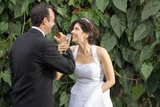 Newly Weds Drink - Horizontal Royalty Free Stock Images