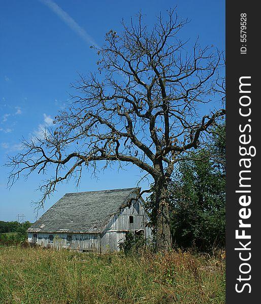Spooky Old Barn