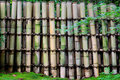 Free Bamboo Fence Royalty Free Stock Images - 5580579