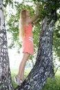 Free Pretty Girl Stay Near Birch In A Park Stock Image - 5584271
