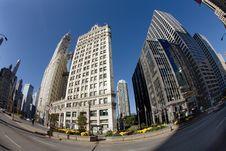 Free Downtown,Chicago,Illinois. Royalty Free Stock Photos - 5581058