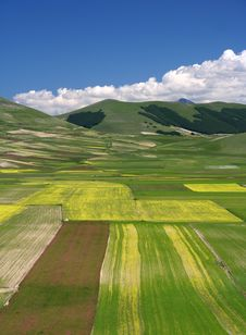 Free Summer Landscape In Castelluccio Royalty Free Stock Photography - 5582457