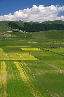 Free Summer Landscape In Castelluccio Stock Photography - 5582472
