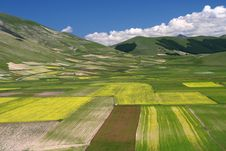 Free Summer Landscape In Castelluccio Stock Photography - 5582492