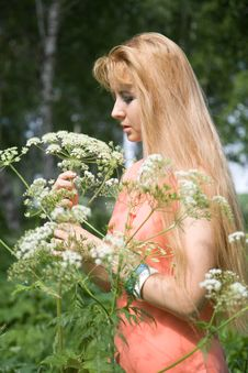 Free Beauty Girl In Summer Forest Royalty Free Stock Image - 5584066
