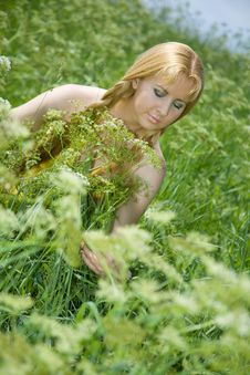 Free Beauty Girl In Summer Forest Royalty Free Stock Photo - 5584215