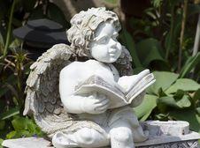 Free Reading Angel Royalty Free Stock Photos - 5584888