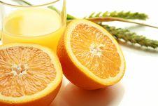 Free Fresh Oranges Stock Photos - 5585493