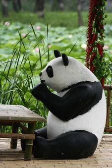 Free Panda Stock Photo - 5585750