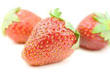 Free Fresh Strawberry Royalty Free Stock Images - 5586269
