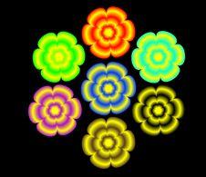Free Flowers Elements Stock Image - 5586451