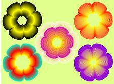 Free Flowers Elements Stock Photos - 5586563