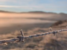 Free Frosty Barbed Wire Royalty Free Stock Photos - 5588448