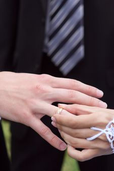 Free Bride Puts On To The Groom A Gold Ring Royalty Free Stock Photography - 5588467