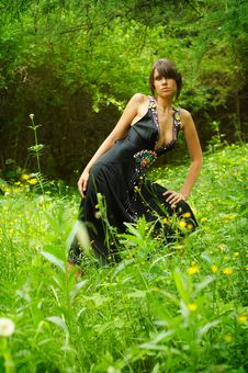 Free Girl Posing In The Woods Royalty Free Stock Photos - 5588928