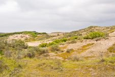 Free Dunes Stock Images - 5591654