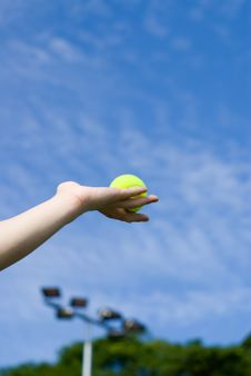 Free Holding The Tennis Ball Stock Photos - 5592103