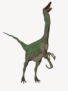 Free Cartoon Dinosaur Calling Royalty Free Stock Images - 5593059