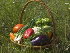 Free Basket With Vegetables Royalty Free Stock Photography - 5594487