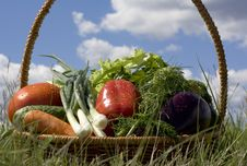 Free Basket With Vegetables Royalty Free Stock Images - 5594559
