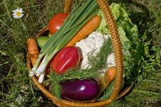 Free Basket With Vegetables Royalty Free Stock Image - 5594596