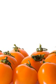 Free Red Cherry Tomatoes Stock Photography - 5596742